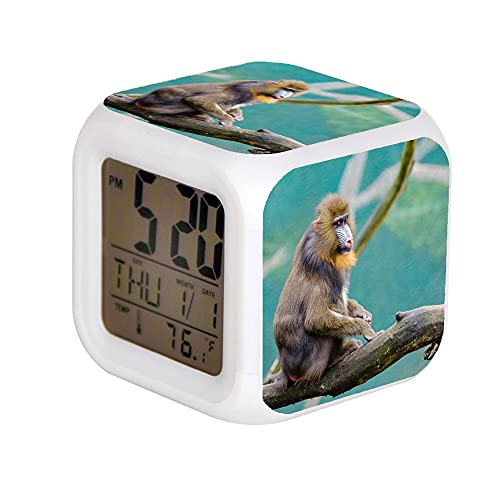 7 ColorAlarm Reloj LED Digital Cambio de Luz Noche Brillante Niños Reloj Despertador Niños Regalo Marrón y Negro Mono en Marrón Rama Durante el Día