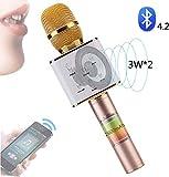 Micrófonos para niños inalámbrica Bluetooth Bluetooth micrófono Altavoz, micrófono inalámbrico portátil, Cámara en Mano Karaoke Player, 2600mAh largecapacitybattery