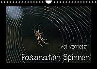 Voll vernetzt - Faszination Spinnen (Wandkalender 2022 DIN A4 quer): Ob im Netz oder im Gegenlicht, die Welt der Spinnen ist faszinierend (Monatskalender, 14 Seiten )