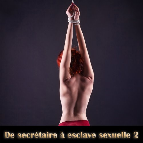 De secretaire a esclave sexuelle 2 audiobook cover art