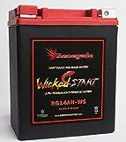 RG14AH-WS; 400 Cold Cranking Amps; Polaris (2006, 2007) Sportsman 450 / (2016, 2017, 2018, 2019) Sportsman 450 HO (EPS) ATV battery BTX14AH-BS,YTX14AH-BS,UB14-A2,YB14-B2