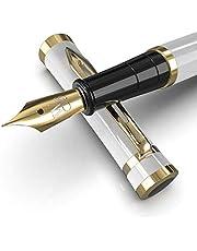 Wordsworth & Black Vulpennen set, Medium penpunt, inclusief 6 inktpatronen en inktvulomvormer, Geschenkdoos, Kalligrafie, soepele schrijfpennen [Wit Goud], Perfect voor Mannen en Vrouwen