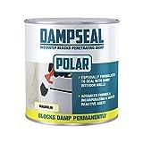 Polar Magnolia Anti Damp Paint 500ml, Damp Proof Paint Stain Blocker Seals in One Coat for Brick, Concrete, Cement and Plaster Walls, Damp Seal Matt Finish