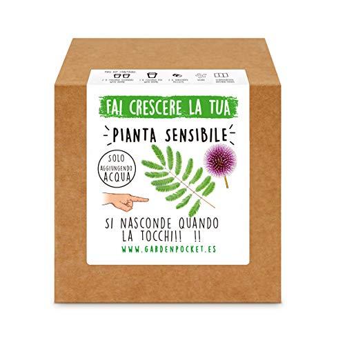 Garden Pocket - Fai crescere la tua PIANTA SENSIBILE - Kit di germinazione