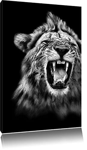 Pixxprint Dark Brüllender Löwe Schwarz-Weiss als Leinwandbild | Größe: 60x40 cm | Wandbild| Kunstdruck | fertig bespannt