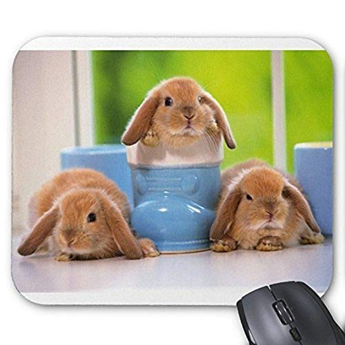 Gaming Mauspad Mousepad Lovely Rabbit Mousepad Series Kaninchen in Mag Mauspad Bunny Rabbit Mouse Pad Rechteck Mousepads