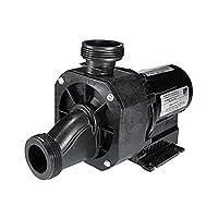 Balboa 15-175-0060 Gemini Bath Pump, 1.5HP, 110V, 12.5A, 0060F00C