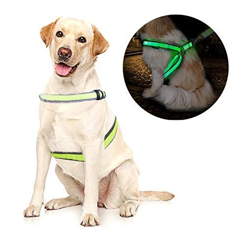 OBloved Dog Harness,LED Dog Vest USB Rechargeable Reflective Harness, Adjustable Lightweight Pet Vest for Large Medium Small Dogs, L Size