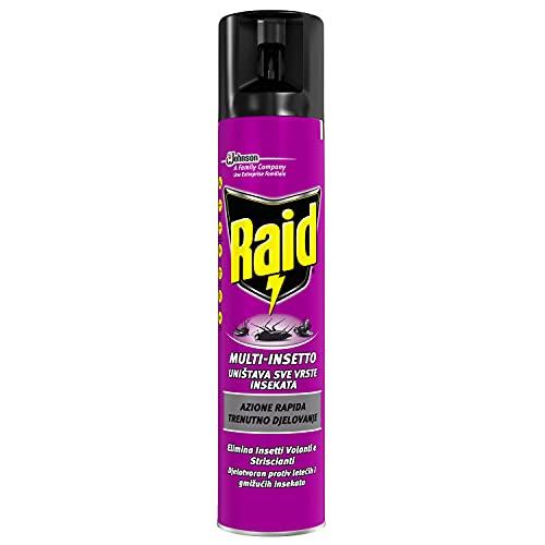 Raid Spray Multinsetto, Insetticida Spray, 1 Confezione da 300 ml