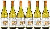 Cono Sur Bicicleta Viognier White Wine