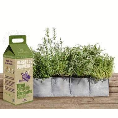Graines à Faire Pousser en kit - Herbes de Provence