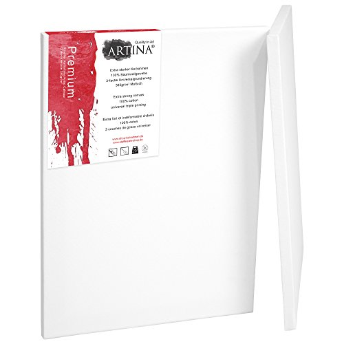 Artina Set de 2 lienzos Blancos Premium de 100% algodón con bastidores robustos 380 g/m² - 70x100 cm