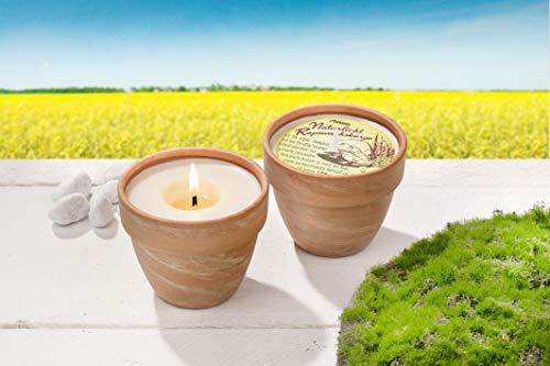 Citronella Duft-Kerze | aus Rapswachs mit natürlichem Citronella Duft im Terrakottatopf | optimaler Mückenschutz | Handmade in Germany | vegan | tierversuchsfrei | ideal für indoor und outdoor