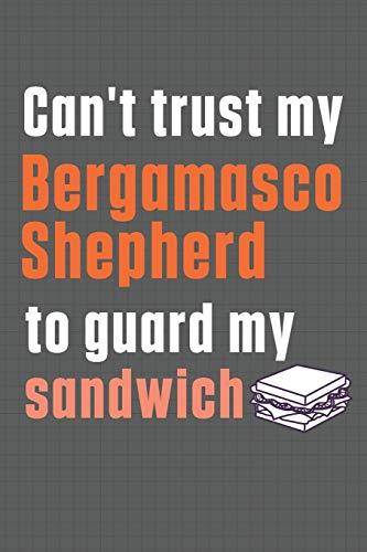 Can't trust my Bergamasco Shepherd to guard my sandwich: For Bergamasco Shepherd Dog Breed Fans