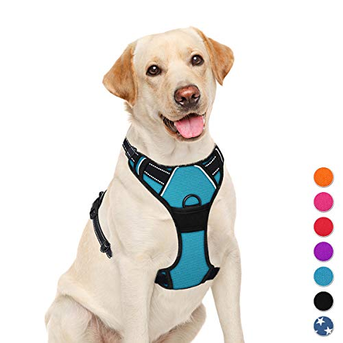 BARKBAY No Pull Dog Harness Large Step in Reflective Dog Harness with Front Clip and Easy Control Handle for Walking Training Running(Blue,L)