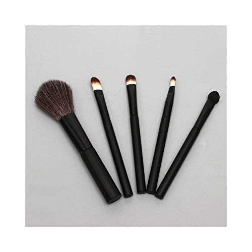 Sets de pinceaux de Maquillage 5 Pièces Ensembles Portable Tube Maquillage Brush Set Outils De Beauté Professional Eye Maquillage Brosse Débutant Maquillage Brosse Maquillage Pinceau (Color : Black)