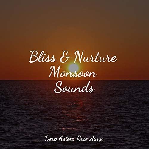 Yoga Namaste, Spa & Música para Relaxar Maestro