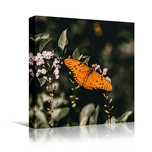 bestdeal depot Butterfly IV Expressive Farmhouse/Country Home Office Insects Lake Multicolor Photography Wall Art Prints for Living Room,Bedroom Ready to Hang - 24x24 inches