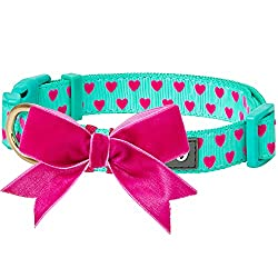 which is the best pretty dog collars in the world