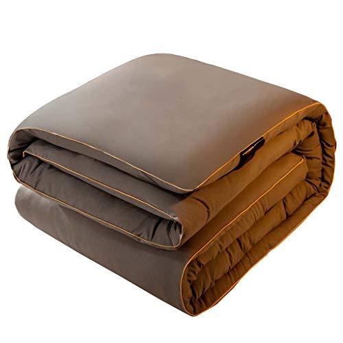 Yuzhijie Colcha de lana de invierno gruesa de algodón cálido ropa de cama de camello para estudiantes de pelo camello colcha de pelo dormitorio primavera y otoño, gris – 180 x 220 cm/3 kg