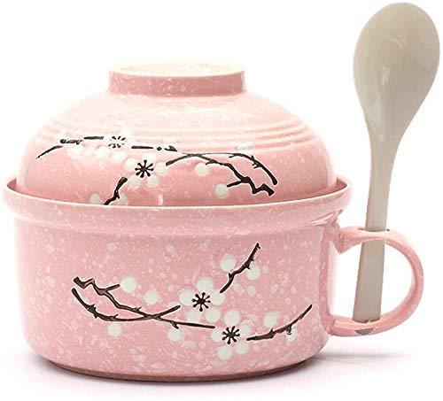 DJY-JY Creative cerámica Ramen Bowl con tapa de ensalada de frutas rosadas tazón de fuente de sopa pintada a mano copo de nieve esmalte traje
