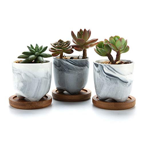 T4U 6CM Ceramic Succulent Cactus Planter Pot with Bamboo Tray Pack of 3 - Mini Grey, Home and Office Decoration Desktop Windowsill Bonsai Pots Gift for Wedding Birthday Christmas