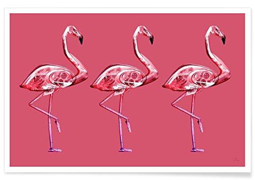 Juniqe® Affiche 40x60cm Flamants Roses - Design Flamingo Yellow (Format : Paysage) - Poster, Tirages d'art & Tableaux par des Artistes indépendants créé par Rubiant