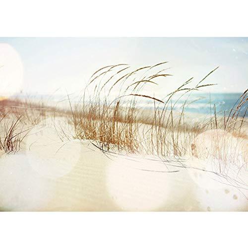 Vlies Fototapete 350x245 cm PREMIUM PLUS HiQ - OEKO-TEX Standard 100 Wand Foto Tapete Wand Bild Vliestapete - Strand Meer Nordsee Ostsee Beach Wasser Blau Himmel Sonne Sommer - no. 0148