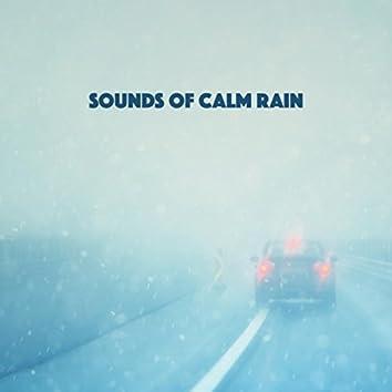 Sounds of Calm Rain