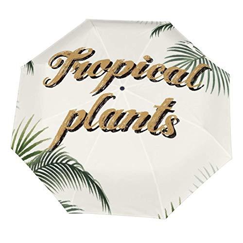 Paraguas de lluvia manual, plegable, resistente al sol, hojas de palmera, plantas tropicales, beige, ligero, plegable (interior de vinilo)
