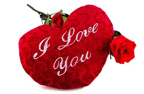 Rosen-Te-Amo, konservierte ewige Rose (40 cm), flauschiges Herz (25) & herunterladbare Grußkarte als zärtliche Geschenk-set. Infinity Rosen: Valentinstag Geschenk für sie & Deko Wohn-Zimmer