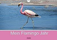 Mein Flamingo Jahr (Wandkalender 2022 DIN A4 quer): Trendtier Flamingo - Die pinke Schoenheit auf Stelzen (Monatskalender, 14 Seiten )
