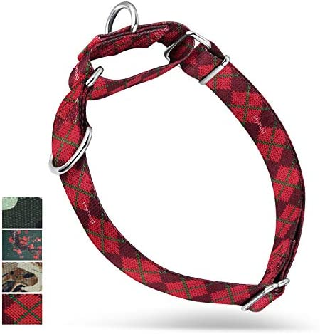 Heavy Duty Upgraded Martingale Dog Collar for Large Dogs Daily Use Walking Professional Training product image