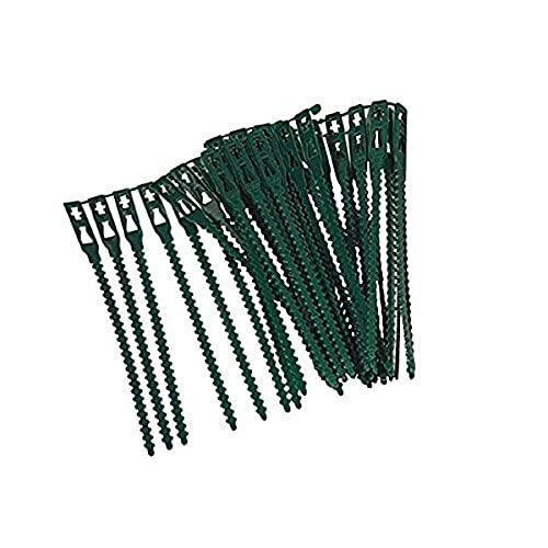 Xclou Attaches réglables pour plantes lot de 40 - Liens de serrage en plastique pour jardin - Serre câbles réutilisables pour plantes vertes et arbustes