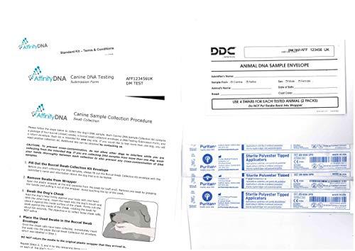Test ADN canin pour la myélopathie dégénérative (MD) - Kit pour la Collecte d'échantillons à Utiliser à la Maison pour Tester 1 Chien - Test canin MD