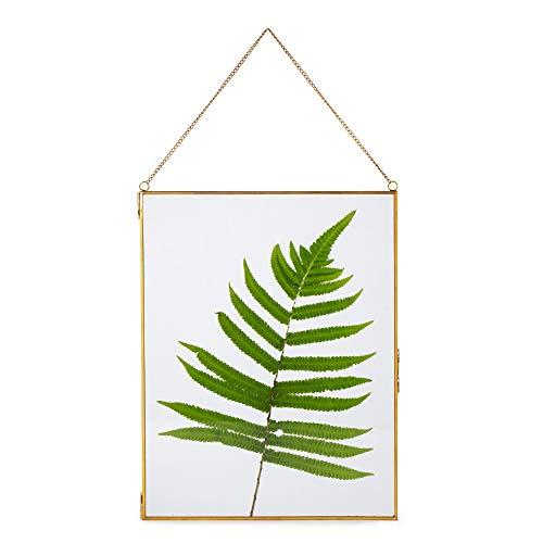 Großer Wandbehang aus Messing, Glas, Kunstwerk, Zertifikat, Foto, Bilderrahmen, geometrisches Ornament, Pflanzen-Exemplar-Clip, moderne vertikale Dekoration, Kartenhalter, mittelgroß, nur Glasrahmen