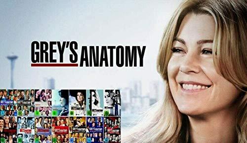 Grey's Anatomy - Die komplette 1. - 14. Staffel [14-Boxen]