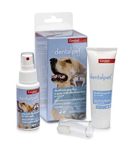 Candioli DentalPet Kit