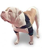 Ortocanis Armbågsskydd för hund, L