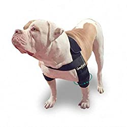 dog elbow protector and sleeves
