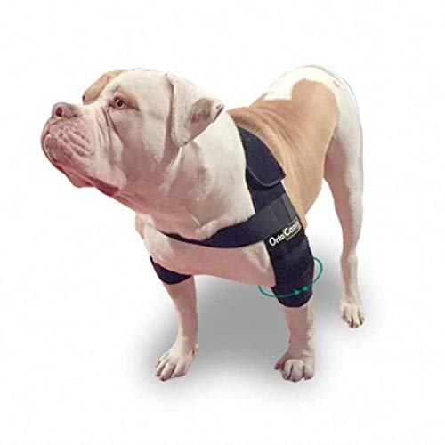 Ortocanis Elbow Pads for Dogs with Elbow Osteoarthritis, Hygromas, Shoulder Dislocation - 5 sizes - suitable for all breeds - Size L