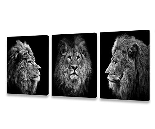 Muolunna Wall art Black And White Lion Head Portrait Wall Art Painting Pictures Print 3 pieces Canvas Animal For Bedroom Living Room Office Wall Decor Home Decoration Framed Ready to Hang