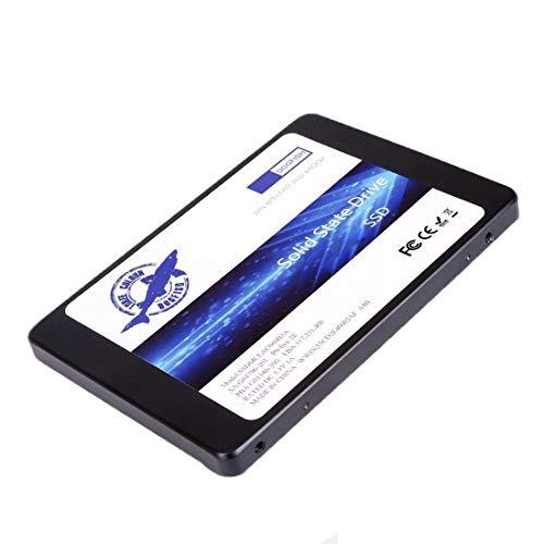 THREE COLOUR DOGFISH SSD 250GB SATA3 2.5 Inch Unidad De Estado Sólido Incorporada 7MM Height High SpeedIncluye SSD 32GB 60GB 64GB 120GB 128GB 240GB 250GB 480GB 500GB 1TB (250Gb, 2.5''-SATA3)