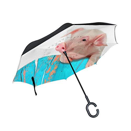 Regenschirm mit Schweinchen zum Aufhängen am Zaun umgekehrter Sonnenblume Tier, doppelschichtig, winddicht, selbststehend, UV-Schutz, nicht automatisch, groß, gerade, C-förmiger Griff für Auto Regen