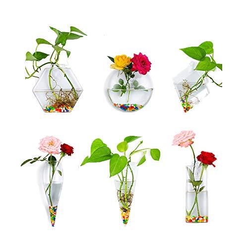 6Pcs / Set Fioriere in Vetro appese a Parete Vasi per Piante Terrario Contenitore Coperta per Esterno per Giardino di casa Giardino Matrimonio, 2#, Regalo: 6,3 Once Pietra Colorata