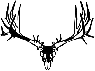 Hunters Image Non-Typical Mule Deer Skull (Black)