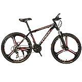 LNX Vélo de Montagne-Freins à Disque Double-vélo de Cross-Country à Vitesse Variable Unisexe (30 Vitesses), vélo léger pour étudiant-Junior High School Outdoor Cycling Trip (24 / 26inch)