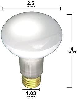 screw in spotlight
