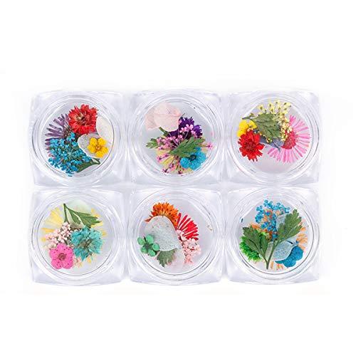 Scopri offerta per Nail art per fiori secchi, fiori veri per unghie, adesivi per unghie 3D con fiori secchi naturali in mix and match