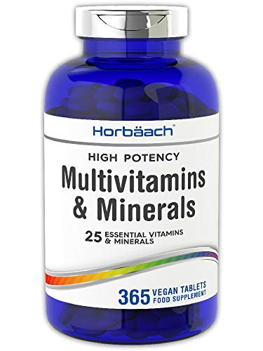 Multivitamin & Minerals Complex | 365 Vegan Tablets | High Strength | with Vitamin C, D3, B, Zinc & More! | 25 Actives | Non-GMO, Gluten Free Supplement for Men & Women